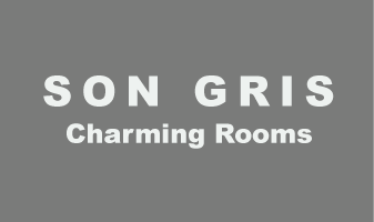 son gris logo menu
